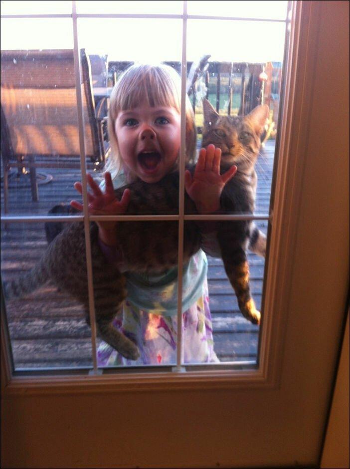 Реакция домашних животных на детей в доме 10