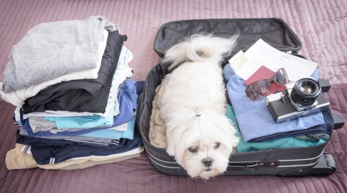 Собираясь в отпуск, не забудьте самое главное