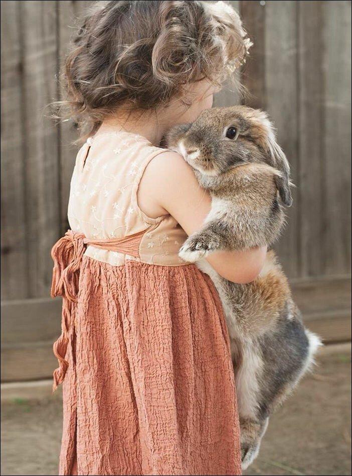 Реакция домашних животных на детей в доме 11